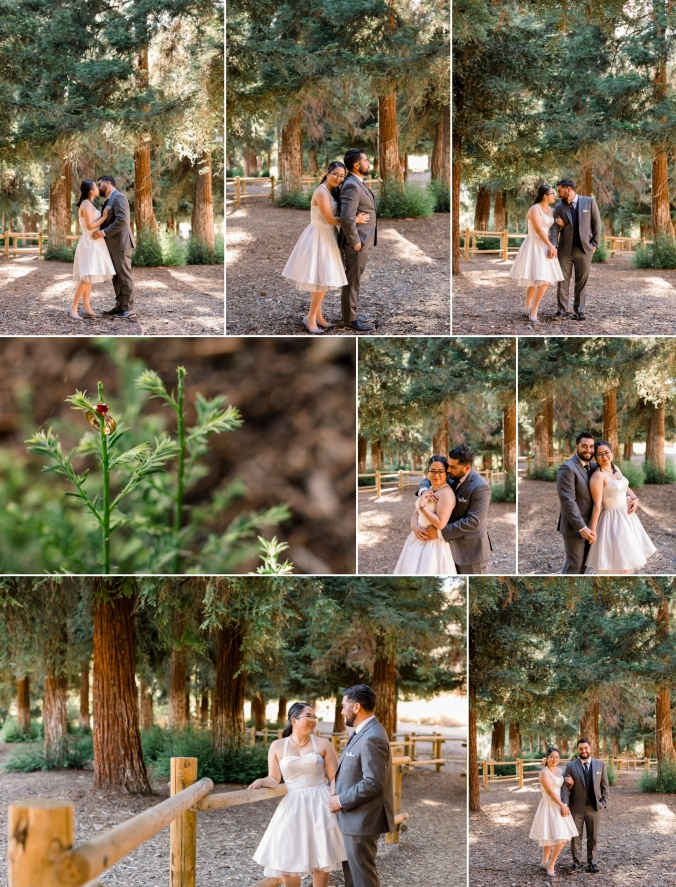 affordable-wedding-photography-orange-county-carbon-canyon-engagement-session-shy-heart-studios-1